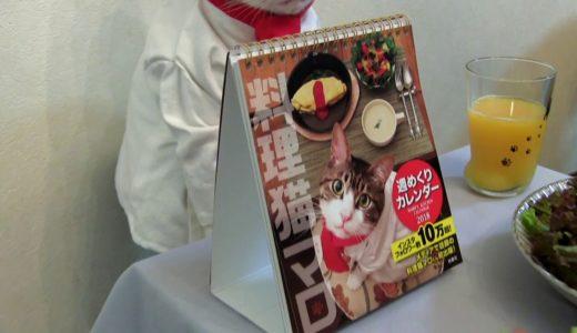 週めくり卓上カレンダー『料理猫マロ』 扶桑社刊