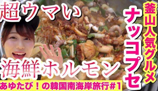 韓国激うま料理「ナッコプセ」を釜山で堪能!釜山の市場・知られざるカフェ・観光地を一気に紹介します!【韓国『釜山・統営・順天・麗水』あゆたび!の南海岸旅行#1】