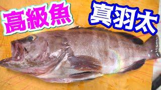 高級魚で作るヒンヤリ料理が美味かった!!