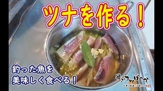 【男の料理】釣った魚を美味しく食べる!ツナを作る!