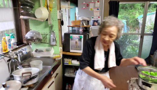 2019.08.10 ばあちゃんの孫への料理教室 ばあちゃん流 ゴーヤの佃煮。