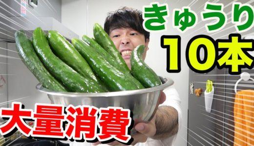 【大量消費】きゅうり10本使い切るまで料理終われません!