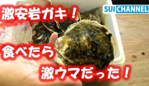 長崎産の安くて激うま岩ガキを簡単料理レシピで食べてみた!