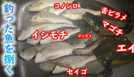 【料理編】え!?それも食べるの?毒魚は美味しい♪【釣り】