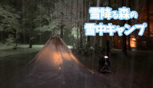 【雪降る森の雪中キャンプ⛺️】薪ストーブで料理して地酒を飲みながら食べる🍽女ひとりと一匹のソロキャンプ🐕🐾〜Making a wood stove dish in a snow camp〜