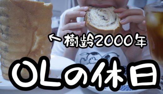 【OLの休日】樹齢2000年のパンをこねてストレス発散【25歳OLのご飯日記】【料理ルーティン】