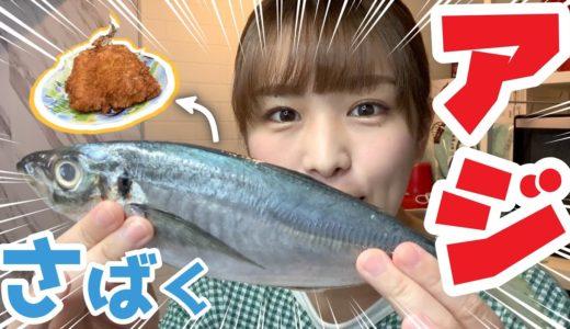 【初挑戦】アジを捌く!【アジフライ】【かりん料理】【かりんグルメ】
