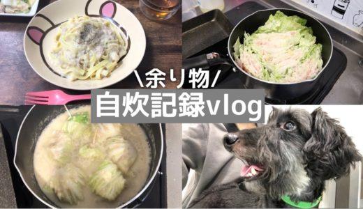 【日常】3回分のご飯(自炊)余り物で簡単料理【自炊記録】白菜/豚肉