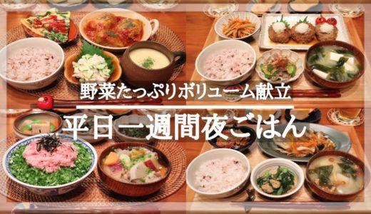 【一週間献立#1】平日5日間の野菜をたっぷり使った夜ごはん献立/毎日のご飯作り/和食/洋食/料理動画/レシピ