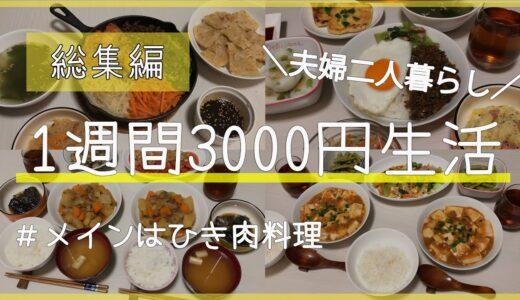 1週間食費3000円生活【総集編】メインはひき肉料理/夫婦二人暮らし/節約生活【給料手取り14万円夫婦】